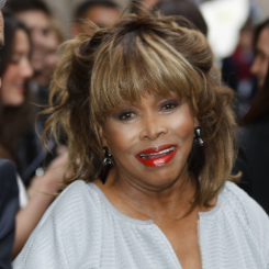 Artiestafbeelding Tina Turner