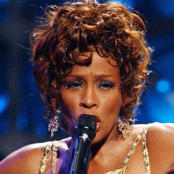 Artiestafbeelding Whitney Houston