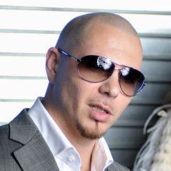 Artiestafbeelding Pitbull