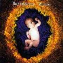 Coverafbeelding The Cranberries - Salvation