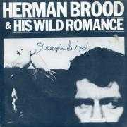 Details Herman Brood & His Wild Romance - Sleepin Bird