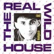 Details Raul Orellana - The Real Wild House