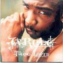 Coverafbeelding Ja Rule - Thug Lovin