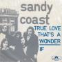 Coverafbeelding Sandy Coast - True Love That's A Wonder