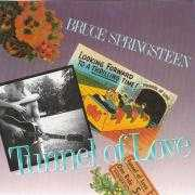Coverafbeelding Bruce Springsteen - Tunnel Of Love