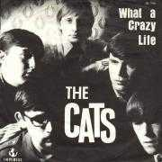 Details The Cats - What A Crazy Life