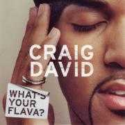 Coverafbeelding Craig David - What's Your Flava?