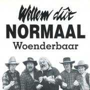 Coverafbeelding Willem Dût Normaal - Woenderbaar