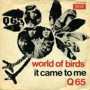 Details Q65 - World Of Birds