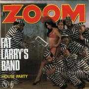 Details Fat Larry's Band - Zoom