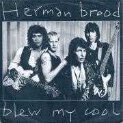 Coverafbeelding Herman Brood - Blew My Cool
