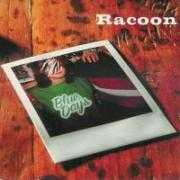 Details Racoon - Blue Days