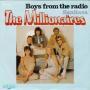 Coverafbeelding The Millionaires - Boys From The Radio