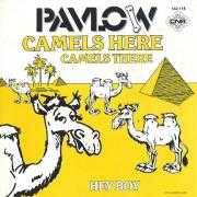 Pavlow - Camels Here, Camels There / Hey Boy