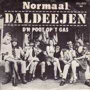 Coverafbeelding Normaal - Daldeejen