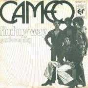 Details Cameo - Find My Way