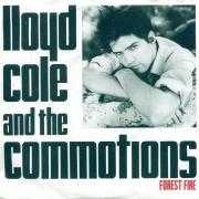 Coverafbeelding Lloyd Cole and The Commotions - Forest Fire