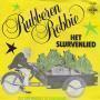 Coverafbeelding Rubberen Robbie - Het Slurvenlied