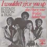 Coverafbeelding Ecstasy, Passion & Pain - I Wouldn't Give You Up
