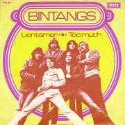Coverafbeelding Bintangs - Liontamer