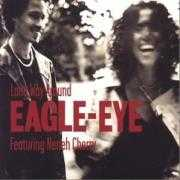 Coverafbeelding Eagle-Eye featuring Neneh Cherry - Long Way Around