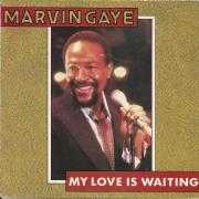 Coverafbeelding Marvin Gaye - My Love Is Waiting