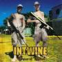 Coverafbeelding Intwine - Peace Of Mind