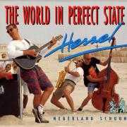 Coverafbeelding Hessel - The World In Perfect State