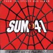 Details Sum 41 - It's What We're All About