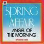 Coverafbeelding Spring Affair - Angel Of The Morning