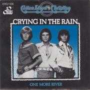 Coverafbeelding Cotton, Lloyd and Christian - Crying In The Rain