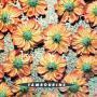 Coverafbeelding Tambourine - Summer Of Love