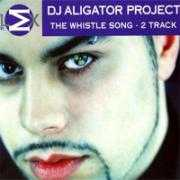 Coverafbeelding DJ Aligator Project - The Whistle Song