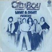 Details City Boy - What A Night