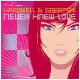 Coverafbeelding Hardwell & Greatski - Never knew love