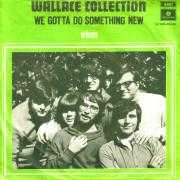 Coverafbeelding Wallace Collection - We Gotta Do Something New