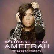 Details Wildboyz feat. Ameerah - The sound of missing you