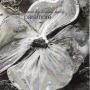 Coverafbeelding Paramore - Brick by boring brick
