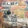 Coverafbeelding Bløf & Eliades Ochoa - Hemingway