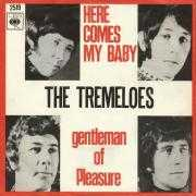 Details The Tremeloes - Here Comes My Baby