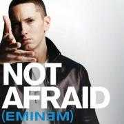 Details Eminem - Not afraid