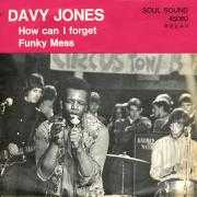 Coverafbeelding Davy Jones - How Can I Forget