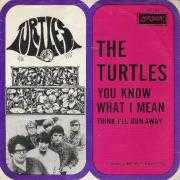 Coverafbeelding The Turtles - You Know What I Mean