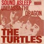 Coverafbeelding The Turtles - Sound Asleep