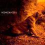 Details Kosheen - Hide U