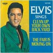Coverafbeelding Elvis - Clean Up Your Own Back Yard
