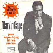 Coverafbeelding Marvin Gaye - That's The Way Love Is