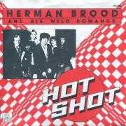 Details Herman Brood and His Wild Romance - Hot Shot