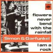 Coverafbeelding Simon & Garfunkel - I Am A Rock