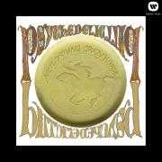 Details neil young & crazy horse - psychedelic pill